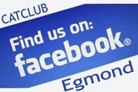 Catclub Egmond Jeugdzeilen Facebook